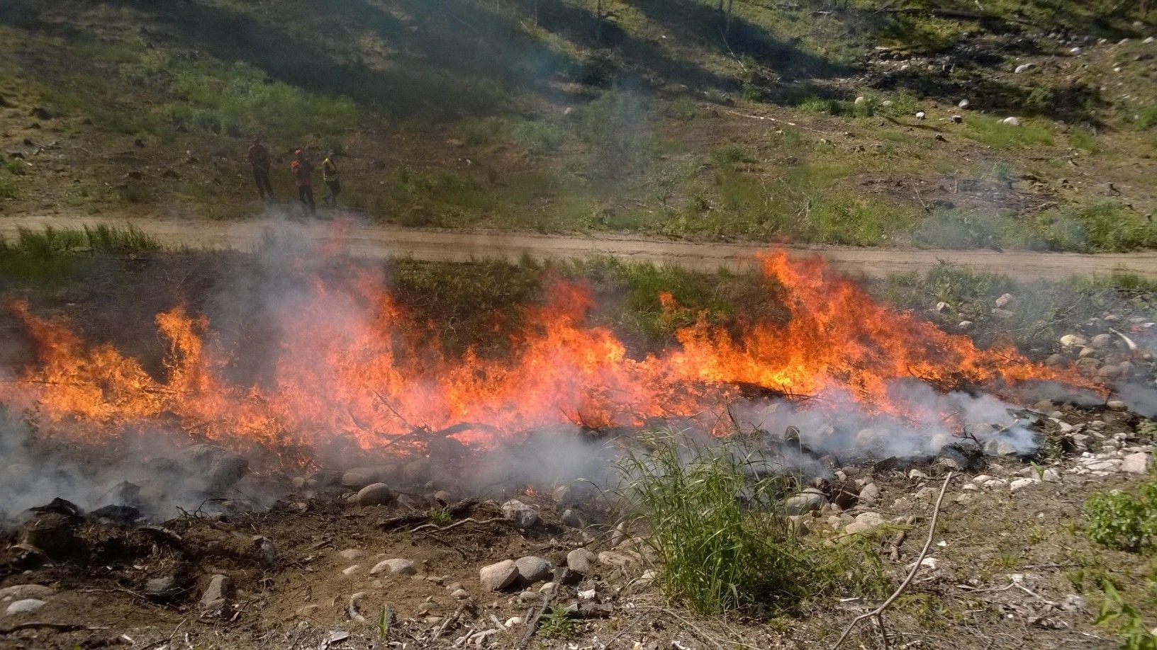 arkbränder har det funnits flera av på Rosala-Hitislandet.