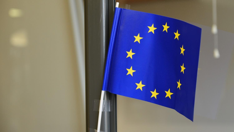 EU:s flagga i miniatyr.