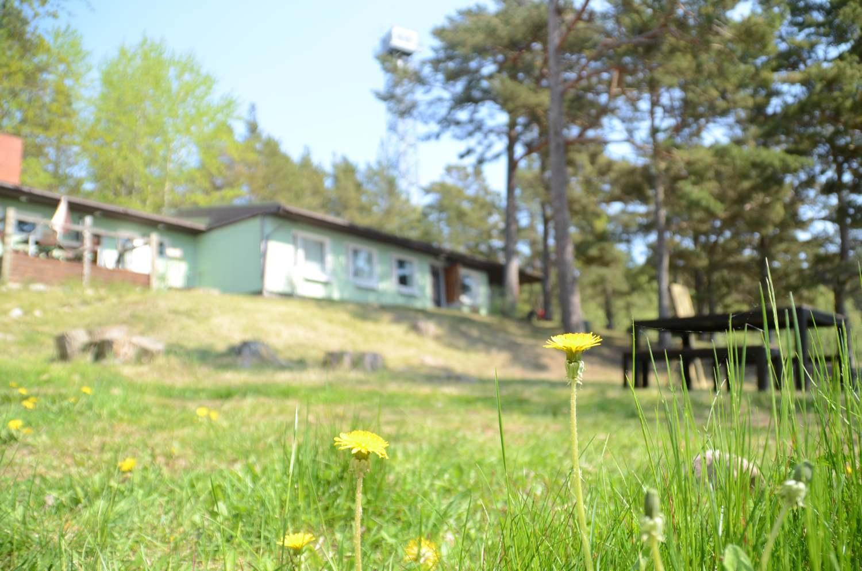 Bodö, sjöbevakningsstation, maskros, skärgård, Åbolands skärgård
