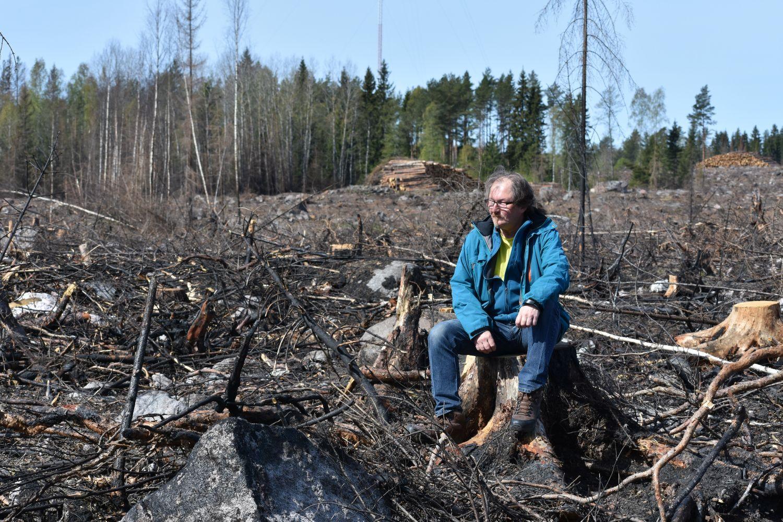 man sitter på stubbe i bränd skog
