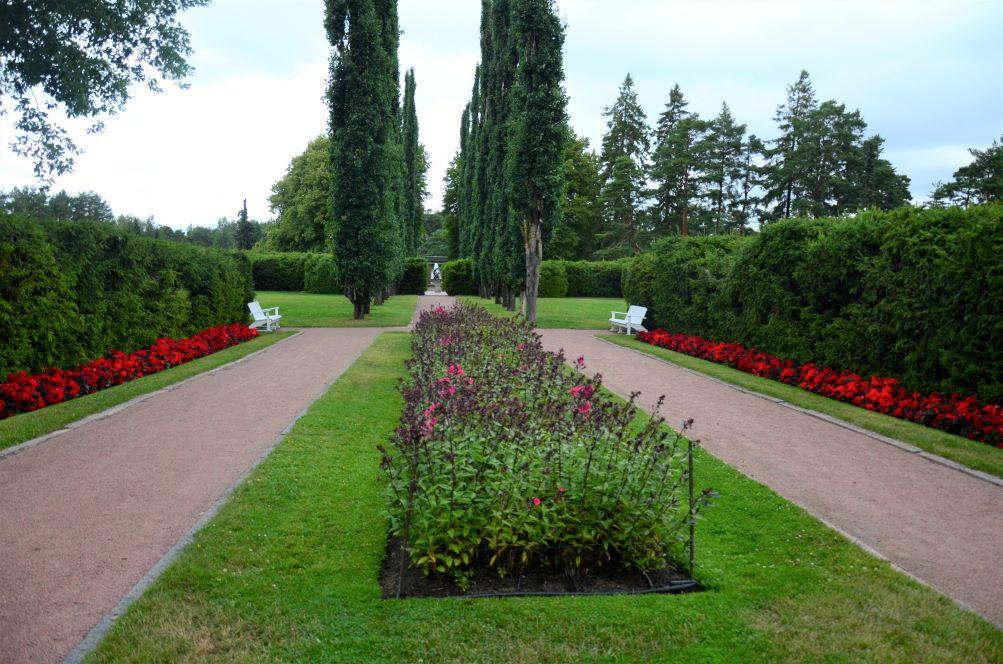 Trädgård med röda blommor.