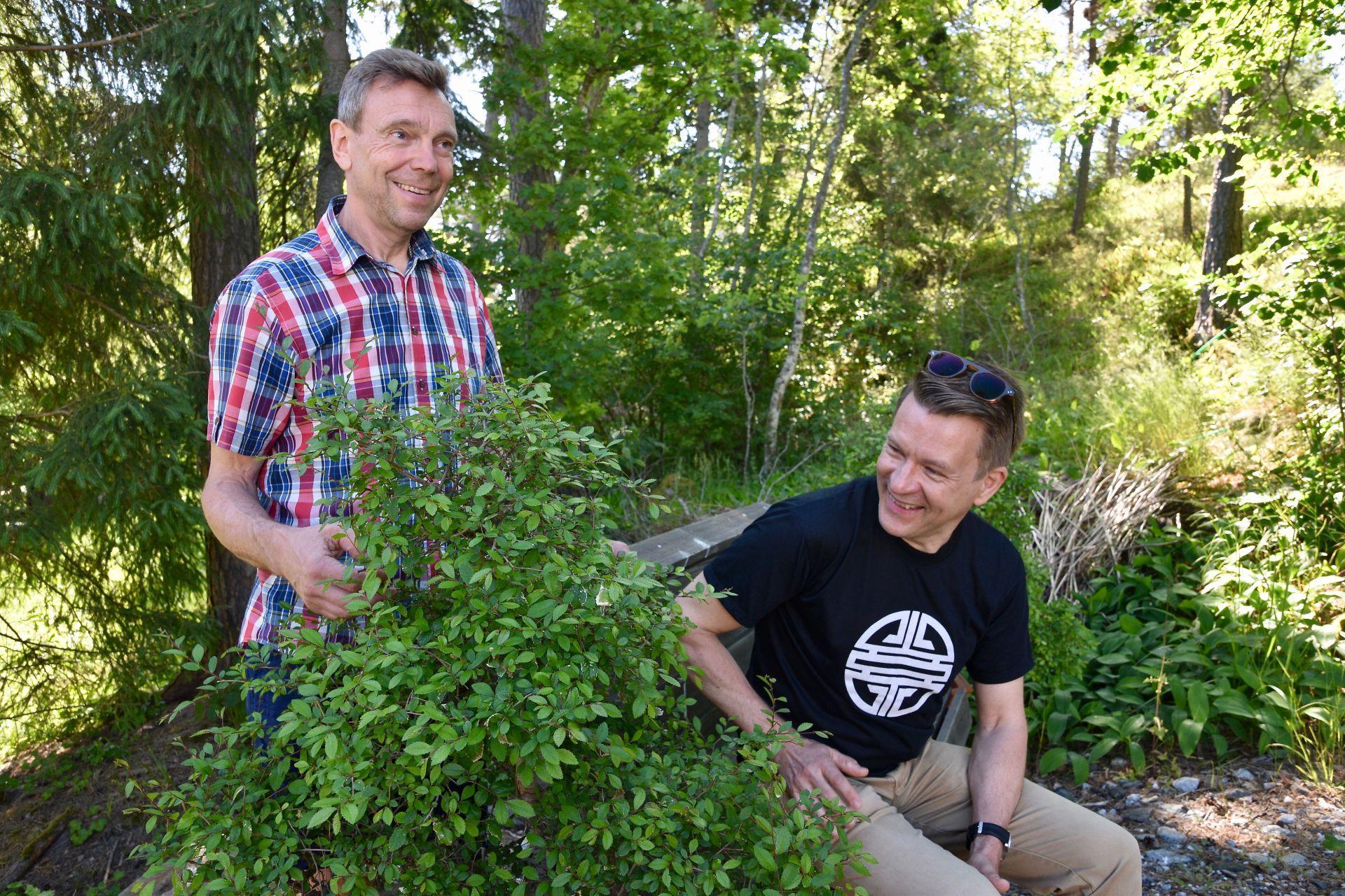 Två män sitter i en grönskande trädgård