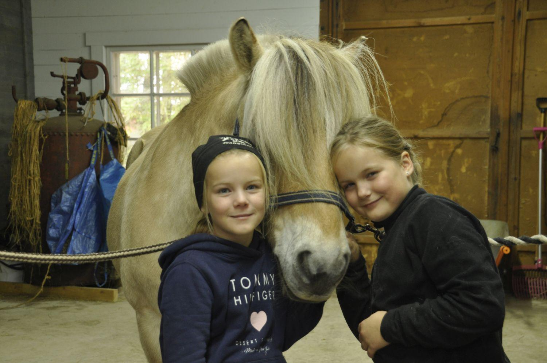 Två tjejer kramar ett hästhuvud från var sida