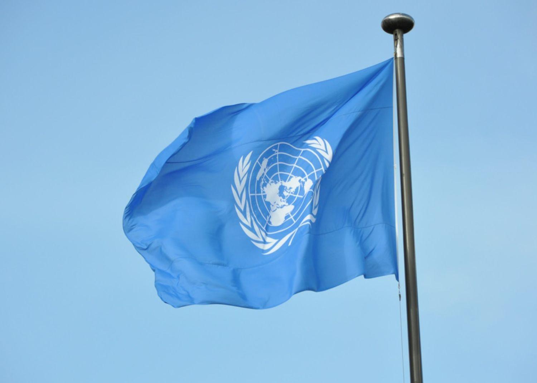 Förenta Nationernas flagga
