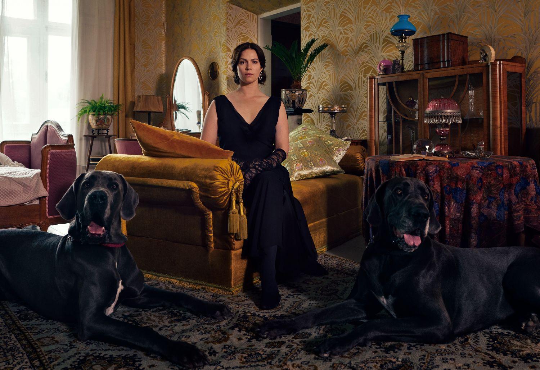 Kvinna i soffa men två stora hundar framför sig