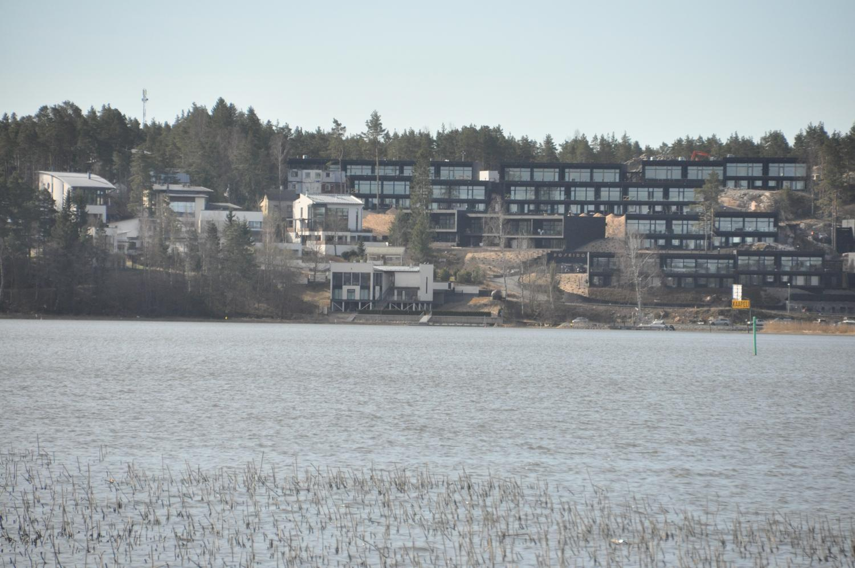vass och vatten i förgrunden, bostäder i bakgrunden