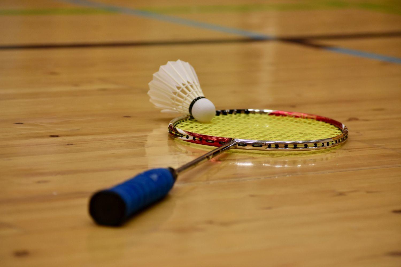 En badmintonracket och en boll.