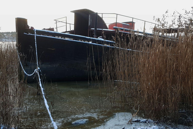 Skrotbåt i vassruggen