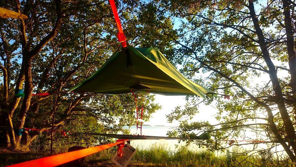 Ett grönt tält har spänts upp med vajrar mellan träden i en skog.