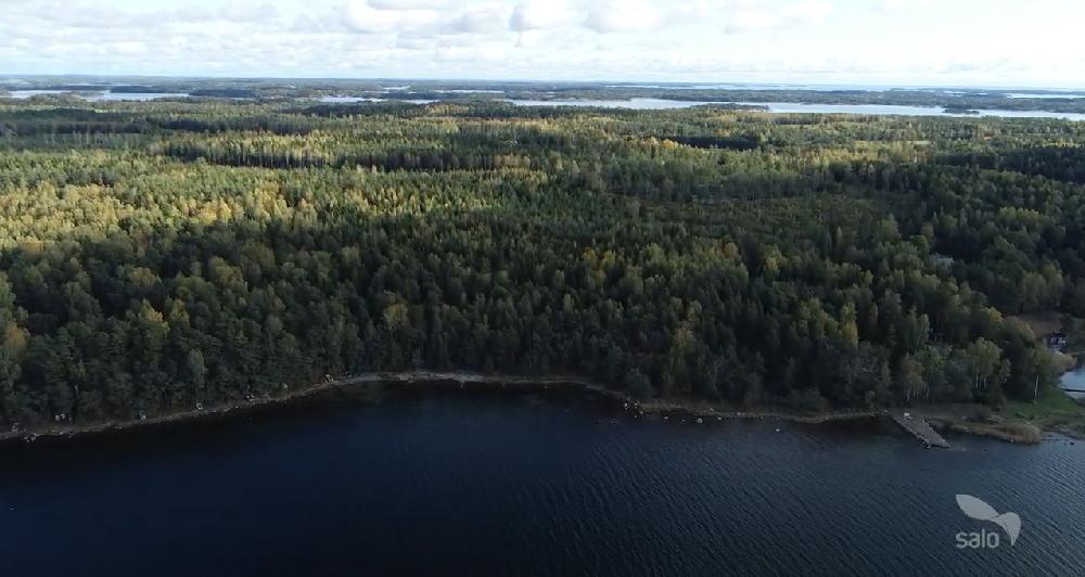 Flygfoto. Strandlinje, skog och hav syns.