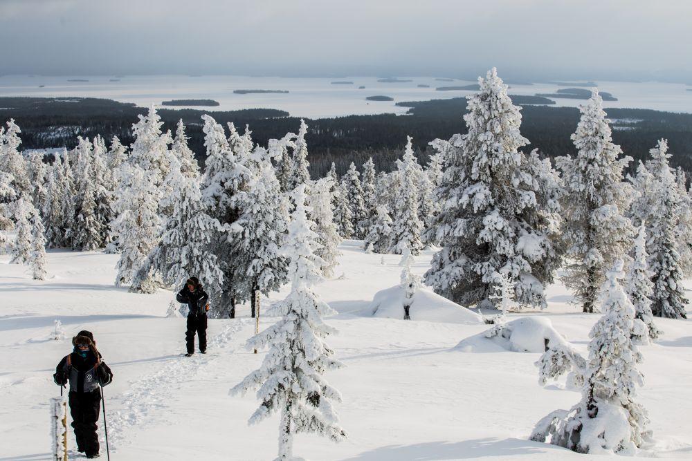 Snötäckt landskap