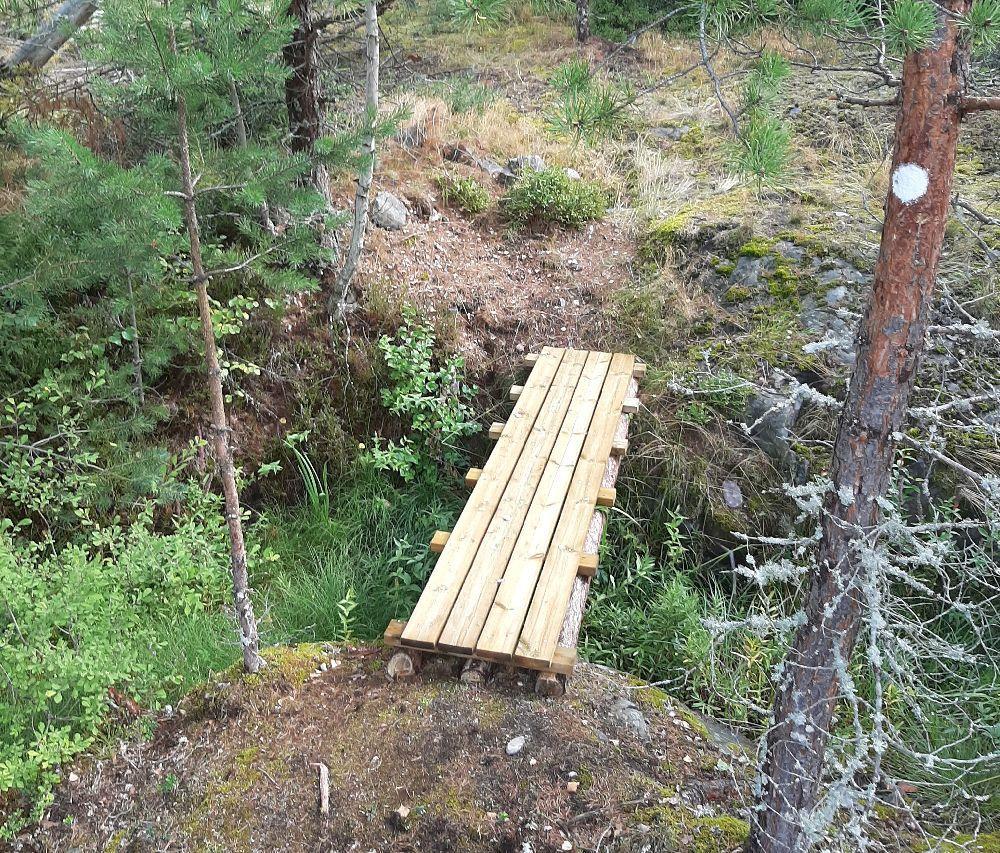 En nybyggd bro över ett litet dike i en skog.